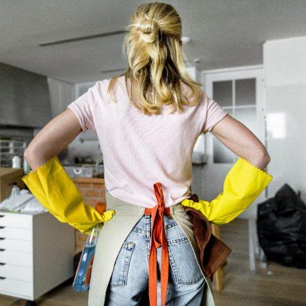 Acúmulo de funções empregada doméstica e babá – regularizar | SOS Empregador Doméstico